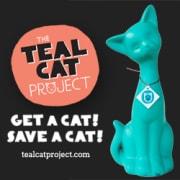 Get a cat, save a cat!