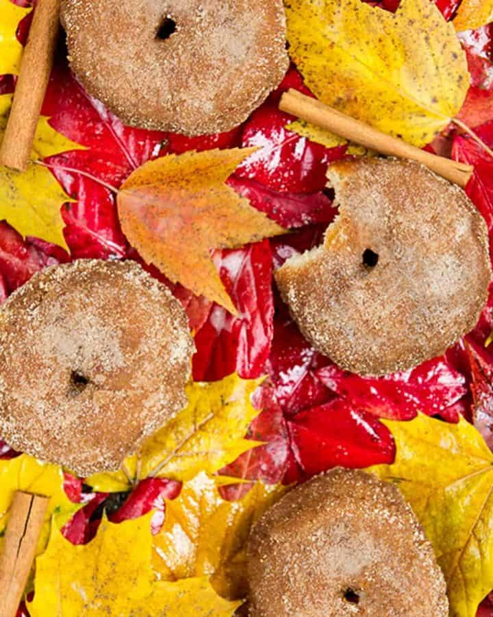 Cider donuts on top of yellow, orange, and red leaves