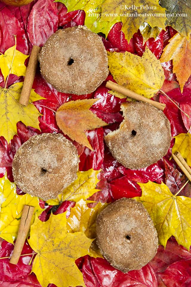 Vegan apple cider donuts on a colorful leaves background