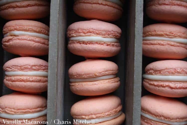 macarons-charis-mitchell