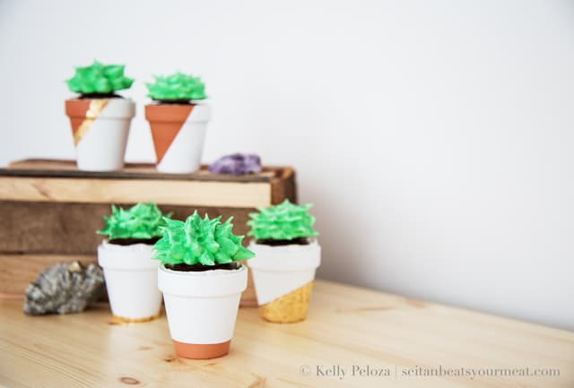 Succulent cupcakes in small terra cotta pots on light pine table with wooden box in background