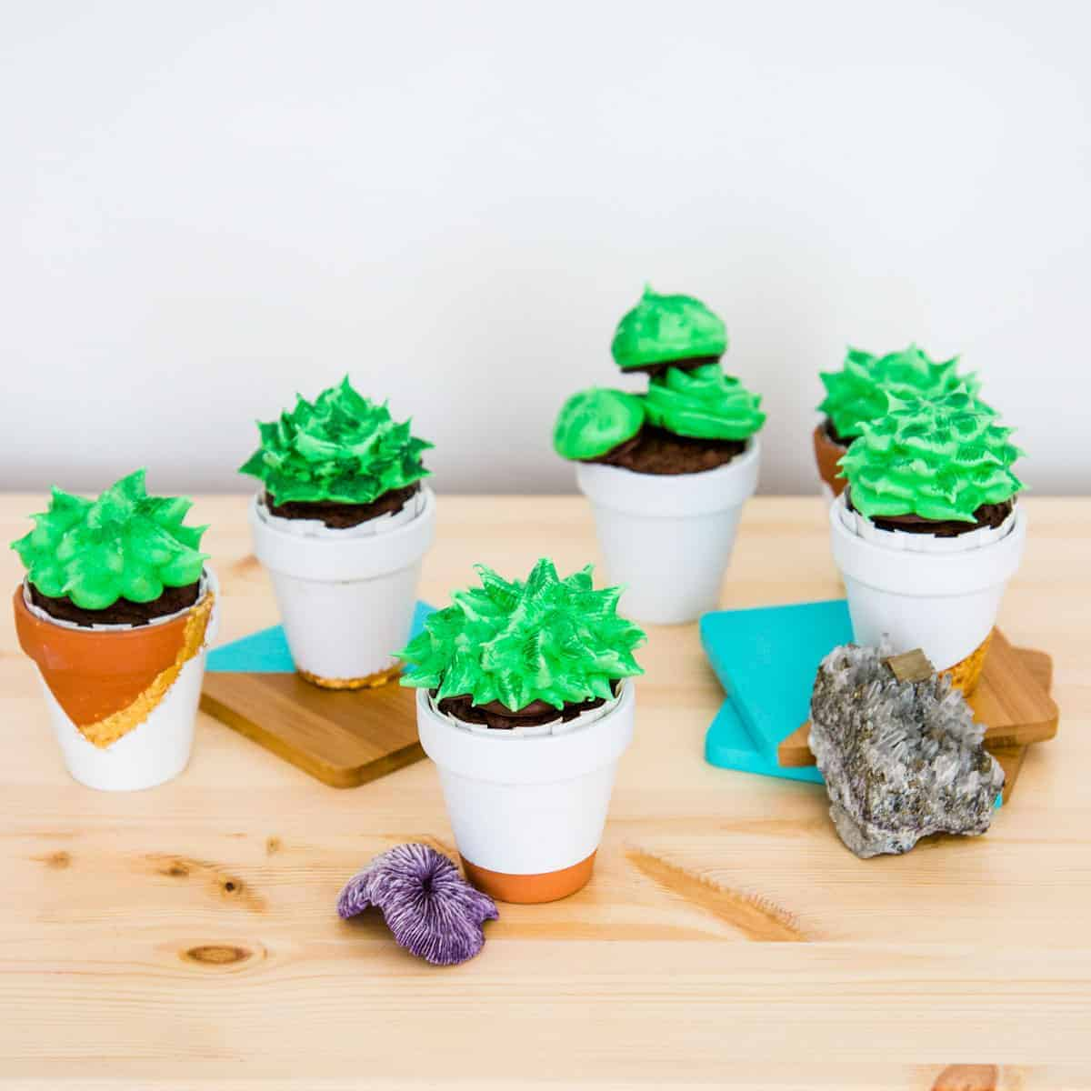 Succulent Cupcakes Vegan Seitan Beats Your Meat
