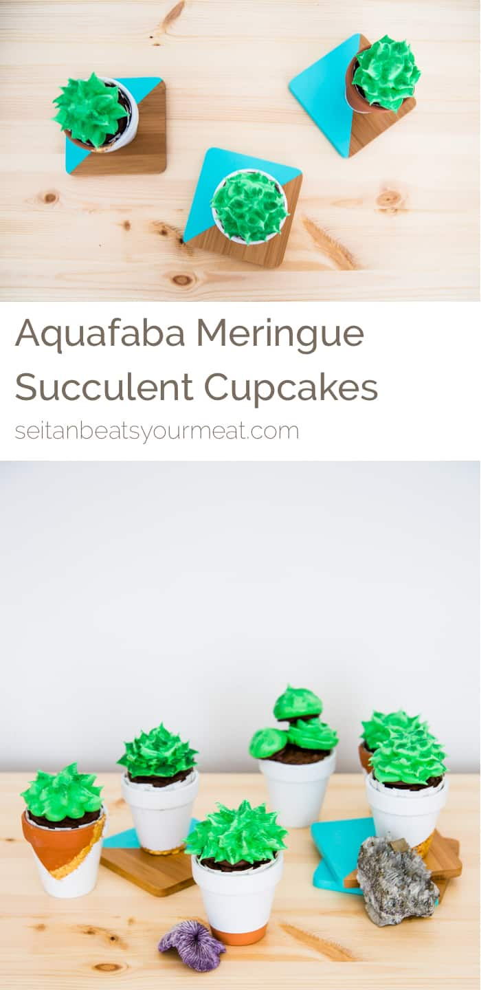 Aquafaba Meringue Succulent Cupcakes | Seitan Beats Your Meat