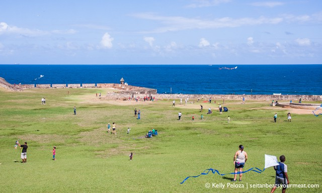 People flying kites in big grassy area in Old San Juan
