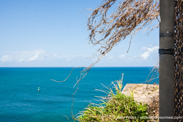 Solo Trip to San Juan, Puerto Rico | Seitan Beats Your Meat