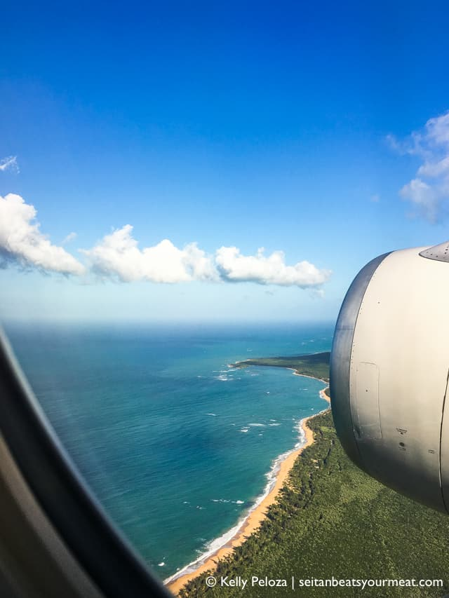 Flight from San Juan | Solo trip to Puerto Rico on Seitan Beats Your Meat
