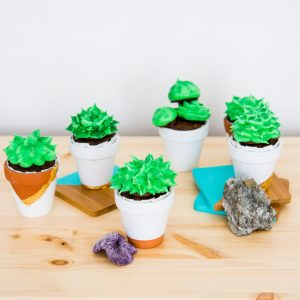 Cupcakes that look like succulents in small terracotta pots