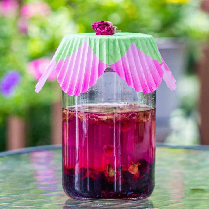 Jar of pink colored vodka with dried hibiscus flowers
